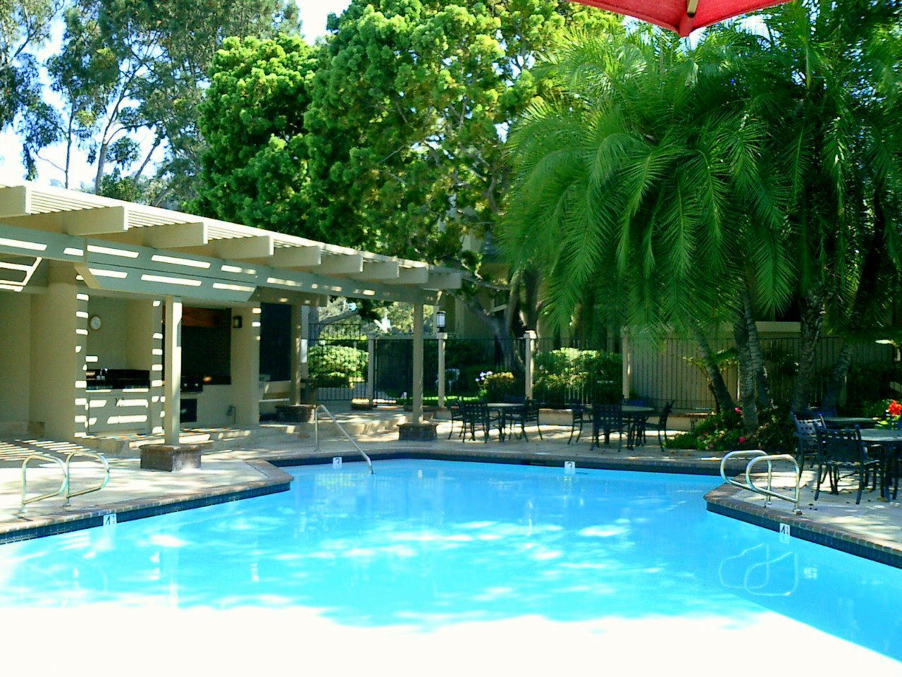 Our beautiful pool and spa